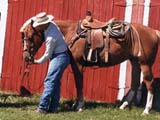 Dismounted Cowboy and horse