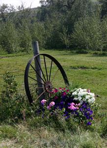 Alberta Cabin Rental Alberta Canada Cabin Rental Alberta